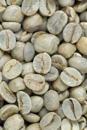 unroasted: A background of raw, unroasted green coffee beans