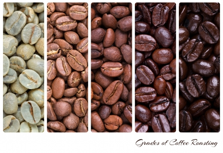 roasting: A collage of coffee beans showing various stages of roasting from raw through to Italian roast