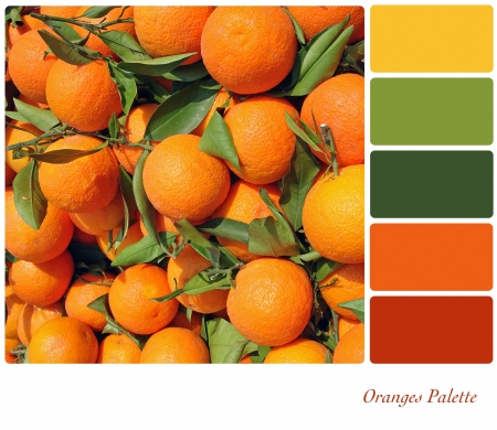 swatches: A background of fresh oranges on a market stall, in a colour palette with complimentary colour swatches. Stock Photo