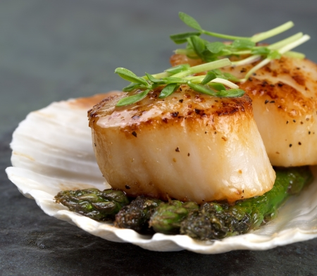 Studio closeup of seared scallops, garnished with pea shoots and served on a bed of asparagus, presented on a scallop shell