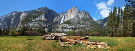 upper half: Yosemite Valley panorama showing the upper and lower Yosemite Falls with a decaying tree in the foreground Stock Photo