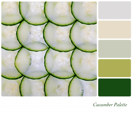 color palette: A closeup of a sliced cucumber in a colour palette with complimentary colour swatches