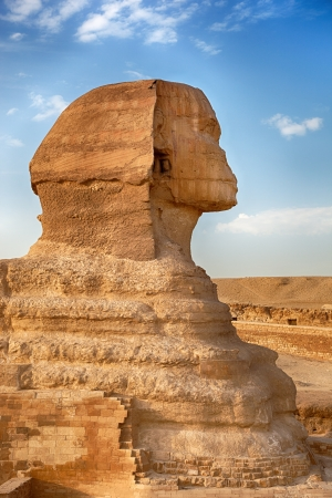 A profile view of the Sphinx, Giza, Egypt photo