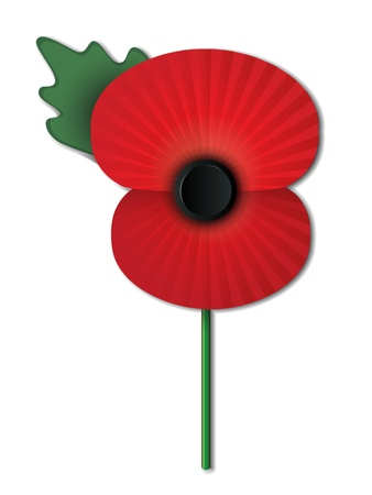 poppy: Remembrance Day poppy isolated on white background  EPS10 vector file contains transparencies, blends and gradients
