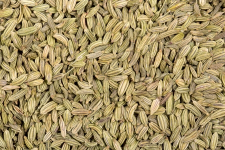 aniseed: A background of dried fennel seeds.  Stock Photo