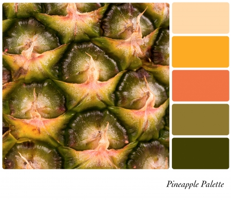 swatches: A closeup background texture of fresh pineapple,  in a colour palette with complimentary colour swatches.