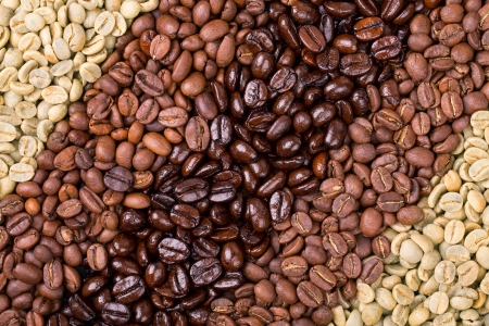 A selection of fresh roasted and unroasted coffee beans arranged in a diagonal stripe pattern.