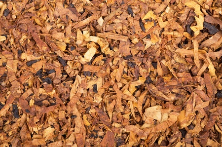 A background of tobacco flakes photo