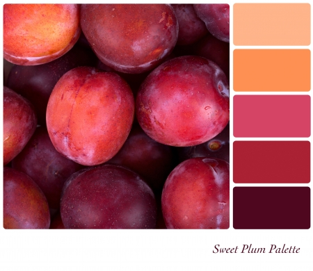 complimentary: A background of fresh red plums in a colour palette with complimentary colour swatches