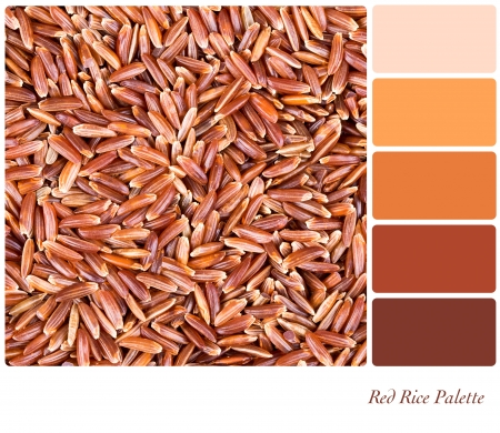 complimentary: A background of red Camargue rice in a colour palette with complimentary colour swatches Stock Photo