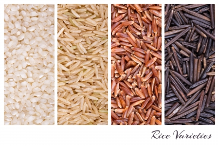 A collage of rice varieties of risotto, brown basmati, red camarge and wild thai rice  photo