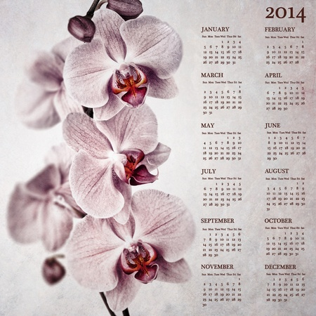 Vintage orchid calendar for 2014 photo
