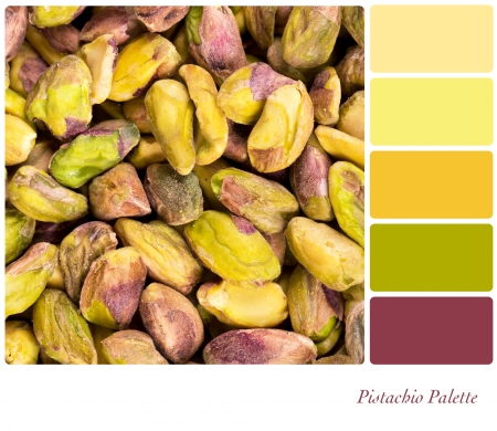 complimentary: A background of shelled pistachio nuts, in a colour palette with complimentary colour swatches