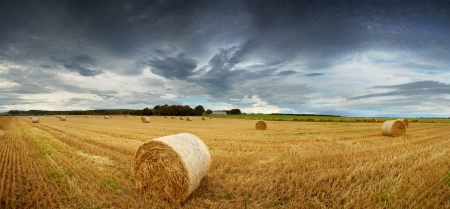 Panorama of straw bales in a field under a dramatic, stormy sky  Rural Scotland between Elgin and Lossiemouth  photo