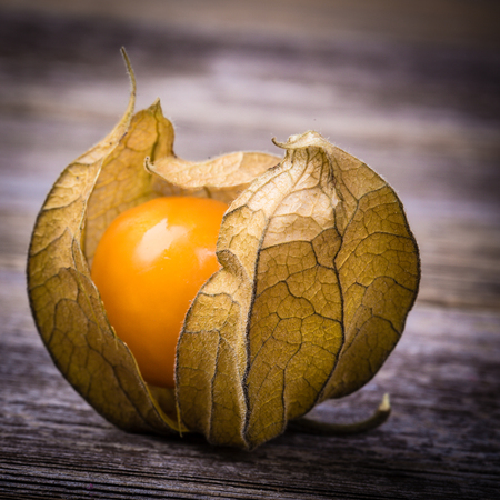 physalis: Physalis, or Cape Gooseberry fruit over old wood background. Vintage effect with intentional vignette