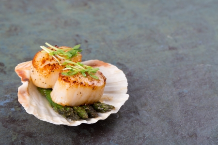 Studio closeup of seared scallops, garnished with pea shoots and served on a bed of asparagus, presented on a scallop shell  Over slate background with space for your text