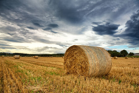 Straw bales with dramatic sky photo