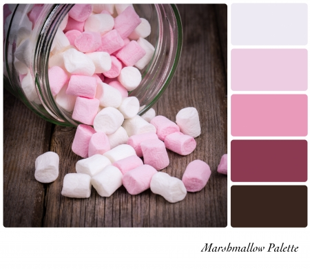 complimentary: Marshmallow color palette with complimentary swatches