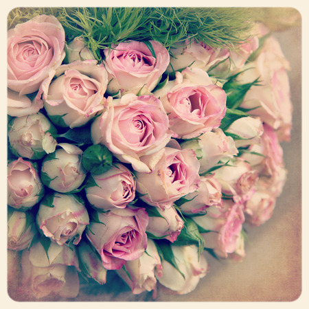 Bouquet of faded pink rosebuds  Filtered to look like an aged instant photo  photo