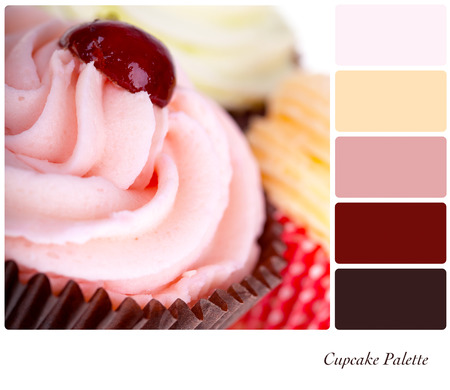 A closeup of frosted cupcakes in a colour palette with complimentary colour swatches photo