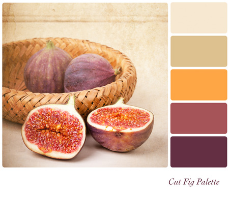 color palette: A basket of cut and whole figs, vintage style, in a colour palette with complimentary colour swatches