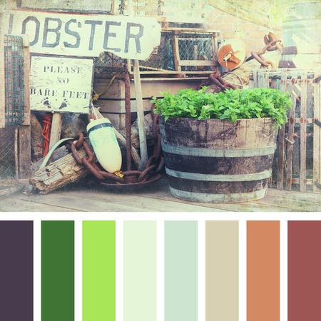 lobster pots: A lobster pots, buoys and fishing equipment on the quayside. Textured retro style processing, in a colour palette with complimentary colour swatches