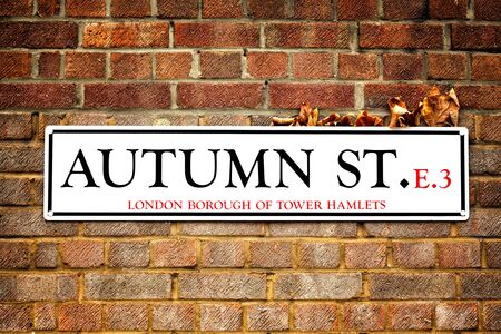 dry leaves: London street sign for Autumn St in Tower Hamlets, East London. The sign has dry autumn leaves caught between it and the red brick wall, highlighting the auteamn leaves and Autumn Street concept.