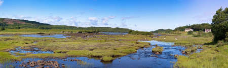 mull: A panorama of sheep grazing on the wetlands of the Island Community of Mull, Isle of mull, Inner Hebrides, Scotland.