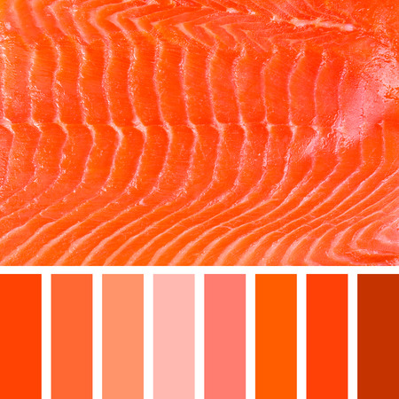 complimentary: A background of smoked salmon, in a colour palette with complimentary colour swatches