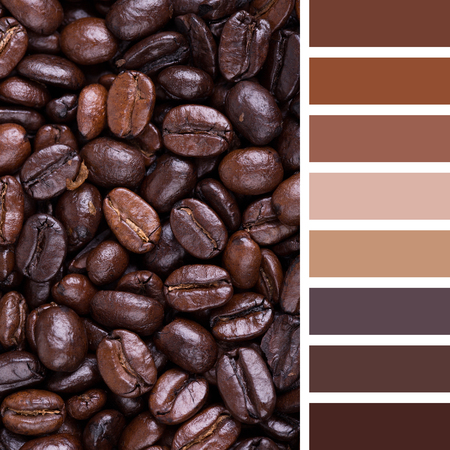 brown: A background of French roast coffee beans. In a colour palette with complimentary colour swatches.
