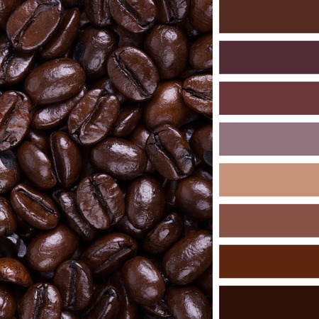 complimentary: A background of Italian Roast coffee beans. In a colour palette with complimentary colour swatches.