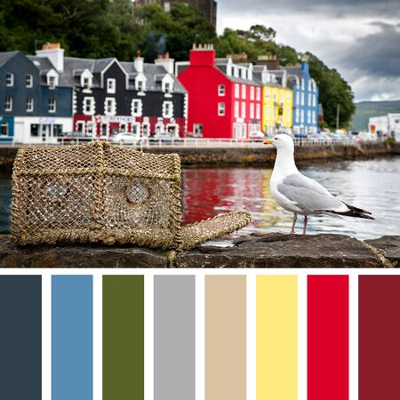 Tobermory quayside with colourful cottages in the background and a seagull with a lobster pot on the harbour wall. The Isle of Mull, Scottish highlands, United Kingdom. In a colour palette with complimentary colour swatches.