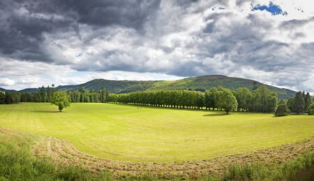 sunlit: Dramatic stormy cloudscape, with sunlit fields and an avenue of trees in the foreground. Scottish Highlands, Scotland, UK