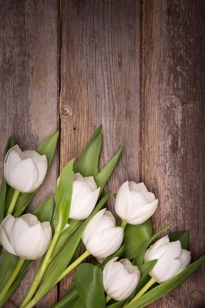 decoracion mesas: tulipanes blancos sobre fondo de madera vieja con el espacio para el texto. procesamiento de estilo retro. Foto de archivo