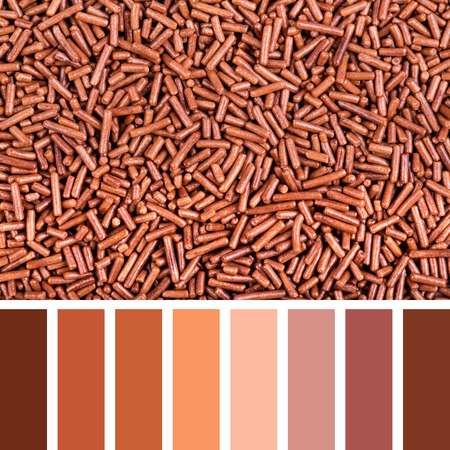 A background of chocolate vermicelli palette with complimentary colour swatches