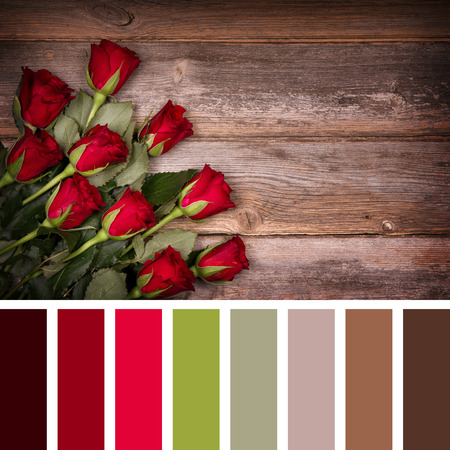 complimentary: Red rose buds over old wood background. In a colour palette with complimentary colour swatches.