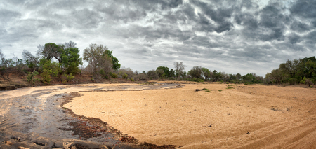 A dry riverbed in Kruger national Park suddenly flows from sudden heavy rainfall, ending many months of drought.