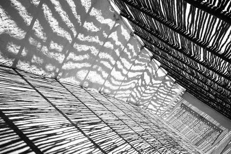 black shadows: Abstract black and white study of shadows and bright sunlight.