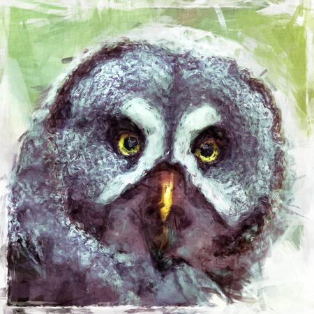 Digital painting of a Great Grey Owl.