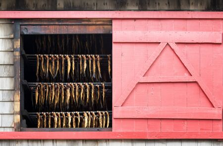 Herring hanging in a smokehouse on Havre Aux Maisons, Iles de la Madeleine, Canada. Exterior of the building showing the rows of fish through a window with pink sliding shutters. Stock Photo