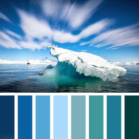 Kittiwakes on an iceberg in the arctic ocean, Svalbard, in a colour palette with complimentary colour swatches. 스톡 콘텐츠