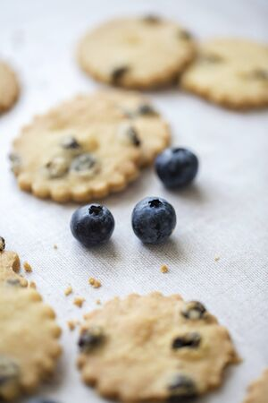 Blueberry shortbread and fruits on line tablecloth. Selective focus on fruit. 스톡 콘텐츠