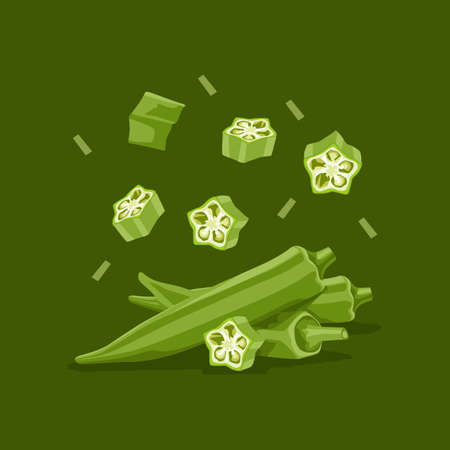 Fresh vegetable Ladies finger or Okra falling vector in green background