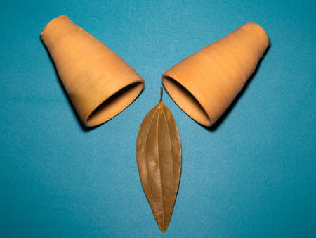 photography art, a leaf and two clay pots in blue background