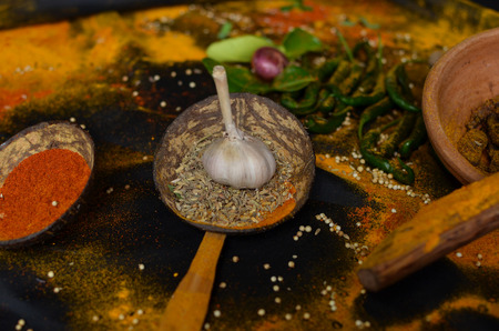 spices of Acehnese 版權商用圖片