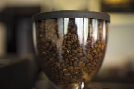 Arabica coffee beans are ready to be mixed into hot coffee