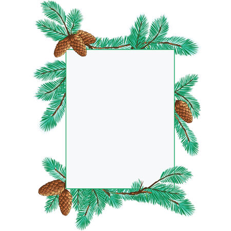 fir cone: Fondo de Navidad con ramas de �rbol de pino
