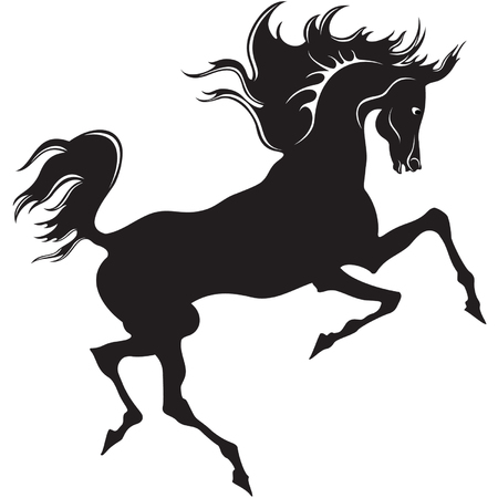 Silhouette of the black horse on the white background