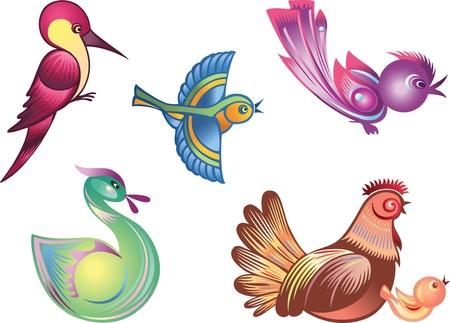 Conjunto de aves decorativas de vector de color  Ilustración de vector