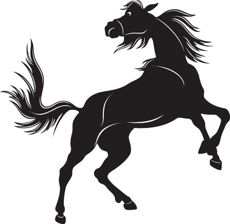Silhouette of the black wild horse Vector